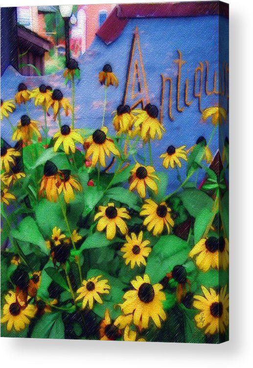 Flowers Acrylic Print featuring the photograph Black-eyed Susans At The Bag Factory by Sandy MacGowan