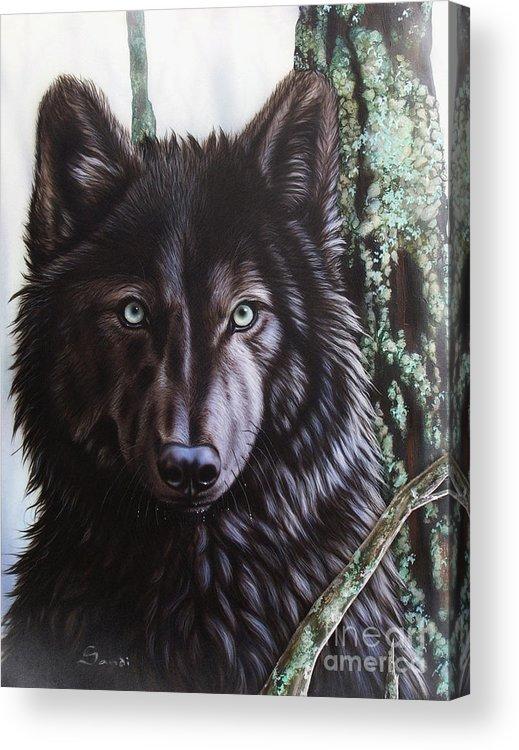 Wolves Acrylic Print featuring the painting Black Wolf by Sandi Baker