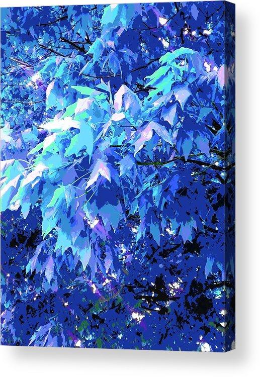 Blue Acrylic Print featuring the photograph Blue Autumn by ONDRIA-UNIqU3-Pics- Admin