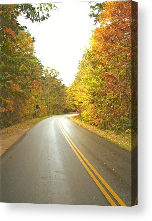 Asheville Acrylic Print featuring the photograph Blue Ridge Parkway In Fall by Cat Rondeau