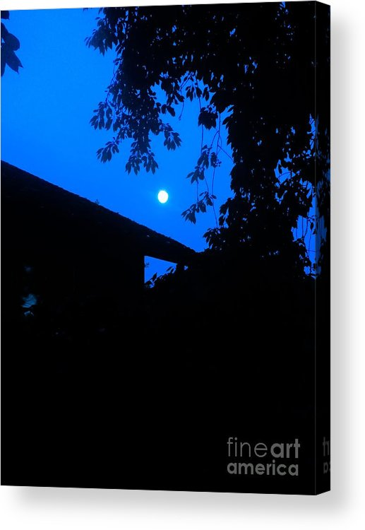 Night Acrylic Print featuring the photograph Bump In The Night by Michael Gailey