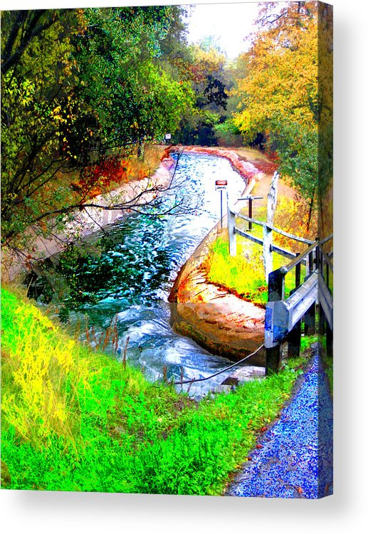 Acrylic Print featuring the digital art Canal by Danielle Stephenson