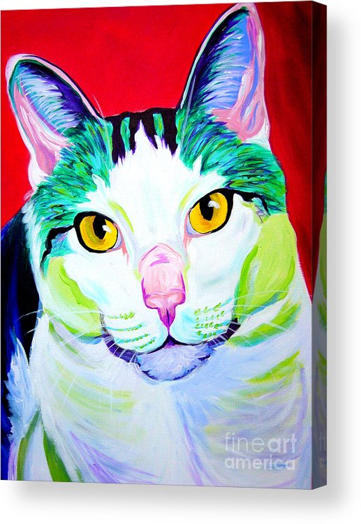 Cat Acrylic Print featuring the painting Cat - Zooey by Alicia VanNoy Call