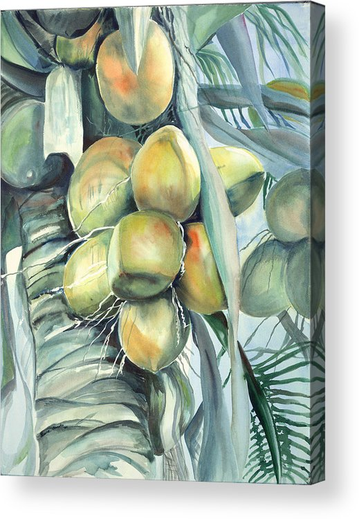 Coconut Palm Acrylic Print featuring the painting Coconuts by Ileana Carreno