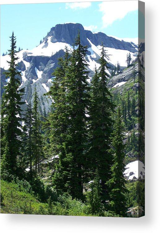 Mountain Peak Acrylic Print featuring the photograph Coleman Pinnacle 2 by Gene Ritchhart
