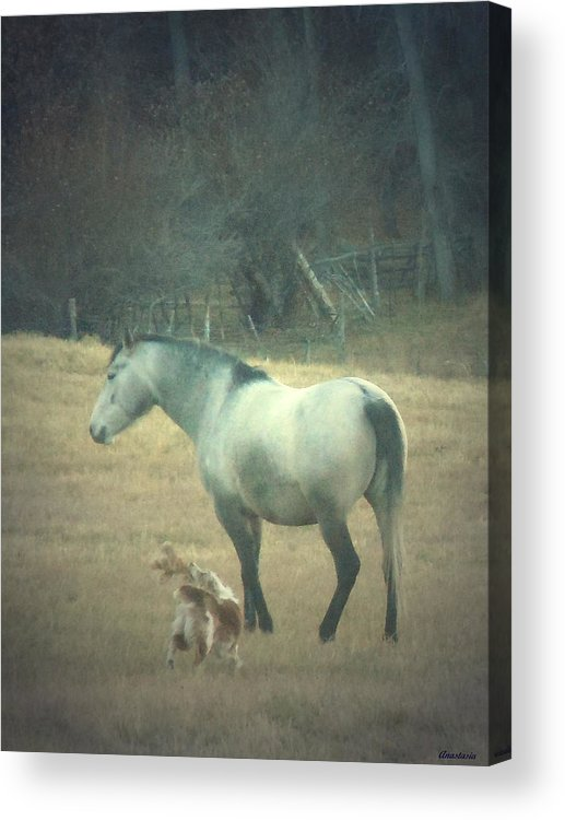 Acrylic Print featuring the photograph Come Play With Me by Anastasia Savage Ealy