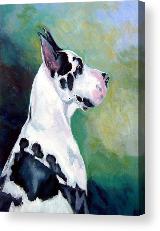 Great Dane Acrylic Print featuring the painting Diva The Great Dane by Lyn Cook