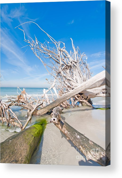 Driftwood Acrylic Print featuring the photograph Driftwood C141349 by Rolf Bertram