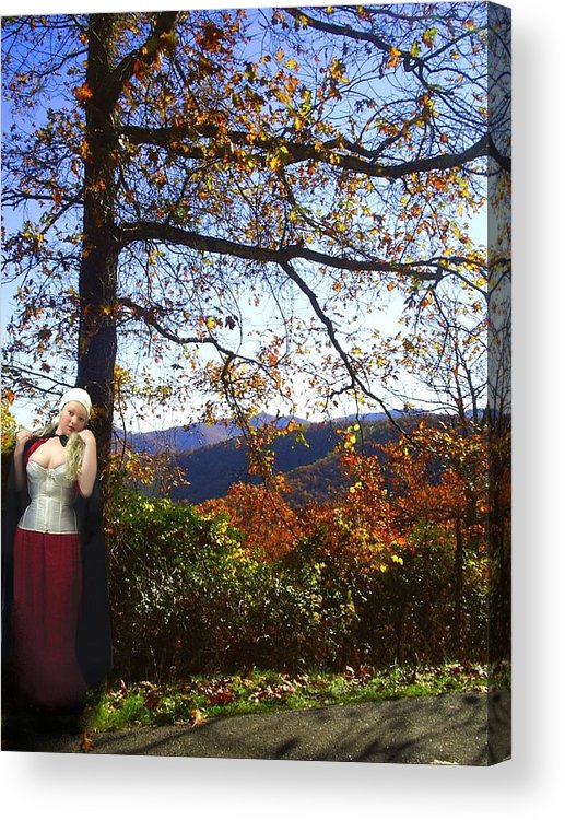 Fall Acrylic Print featuring the photograph Elegant Fall by Scarlett Royal