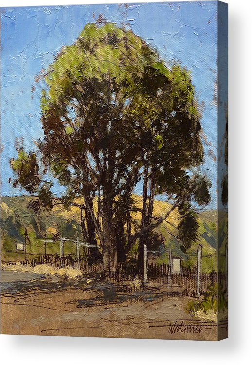Sunlit Tree Acrylic Print featuring the painting Ferry Point by Bill Mather