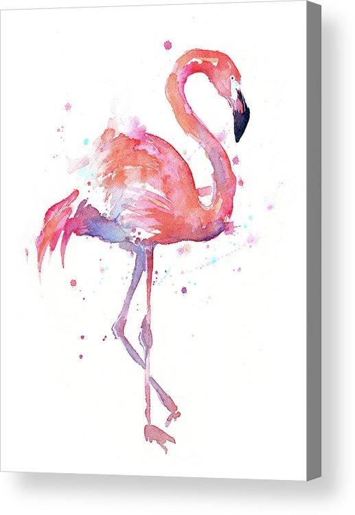 Flamingo Acrylic Print featuring the painting Flamingo Watercolor Facing Right by Olga Shvartsur