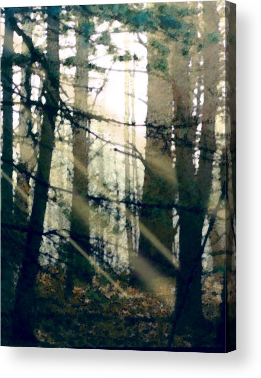 Forest Acrylic Print featuring the painting Forest Sunrise by Paul Sachtleben