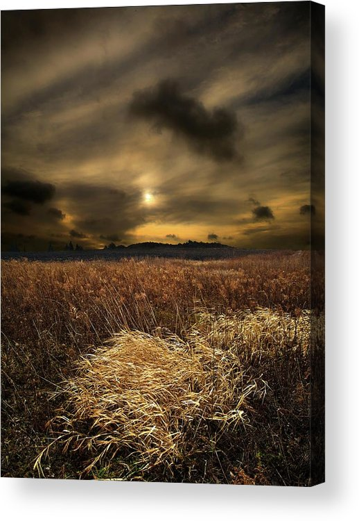 Horizons Acrylic Print featuring the photograph Gift Of Light by Phil Koch