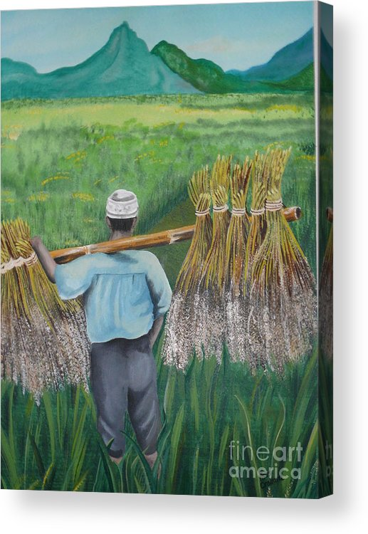 Landscape Acrylic Print featuring the painting Harvest by Kris Crollard