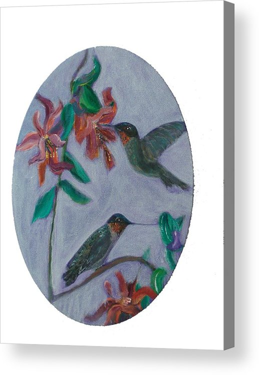 Humming Birds Acrylic Print featuring the painting Humming Birds by Mikki Alhart