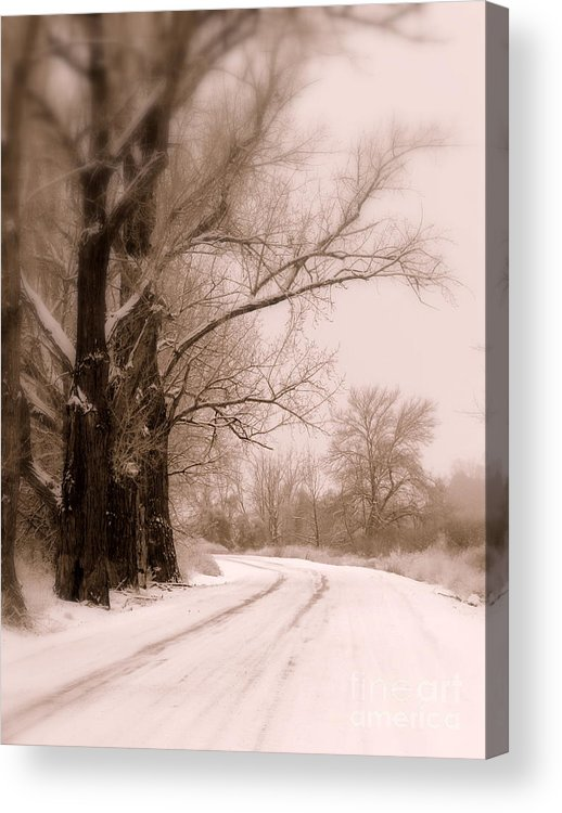 Winter Acrylic Print featuring the photograph Just Around The Bend by Carol Groenen