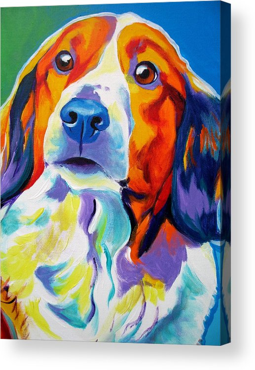 Dog Acrylic Print featuring the painting Kooiker - Dakota by Alicia VanNoy Call