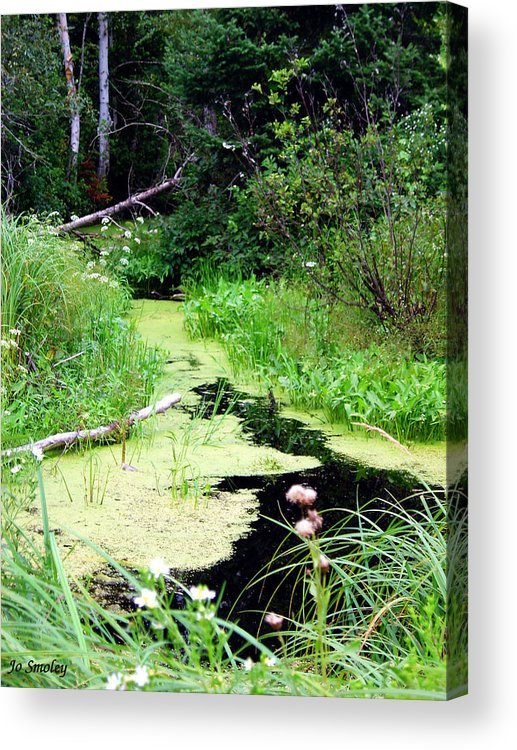 Pine Falls Manitoba Creek Water Acrylic Print featuring the photograph Late Summer At The Creek by Joanne Smoley