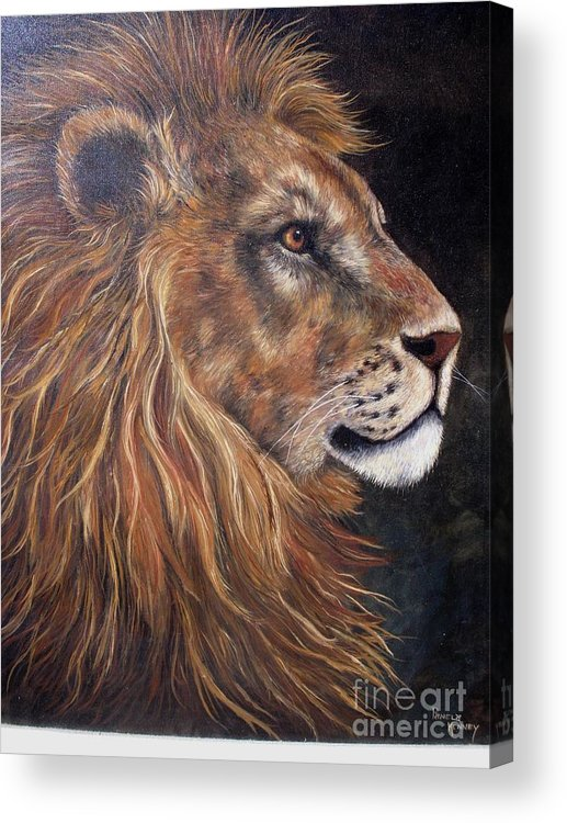 Lion Acrylic Print featuring the painting Lions Portrait by Pamela Squires