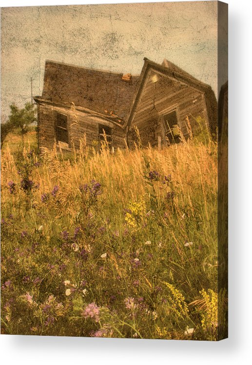 South Dakota Acrylic Print featuring the photograph Market Collapse by Tingy Wende