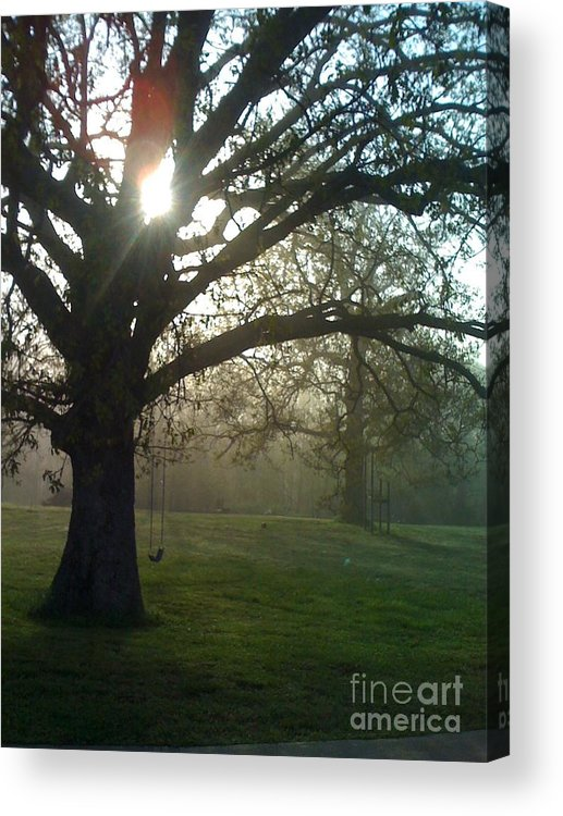Mist Acrylic Print featuring the photograph Misty Morning by Nadine Rippelmeyer
