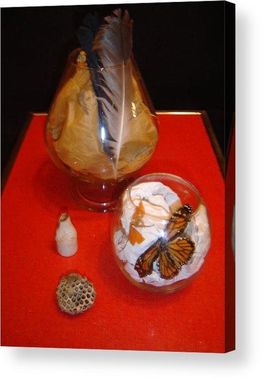 Still Life Acrylic Print featuring the photograph Monarch by Dean Corbin