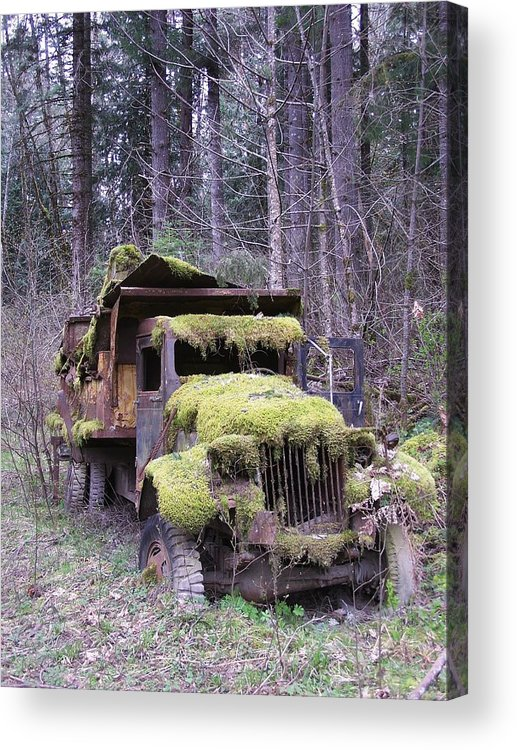 Truck Acrylic Print featuring the photograph Mossy Truck by Gene Ritchhart