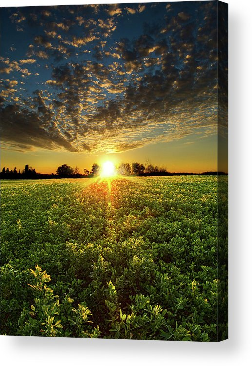 Horizons Acrylic Print featuring the photograph Painted by Phil Koch