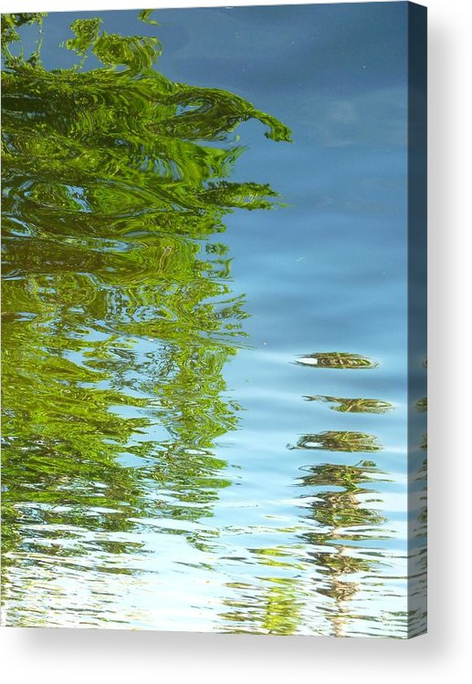 Water Acrylic Print featuring the photograph Palm Flect IIi by Florene Welebny