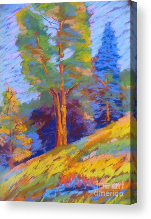 Pastels Acrylic Print featuring the pastel Pastel Class Demo by Rae Smith PSC