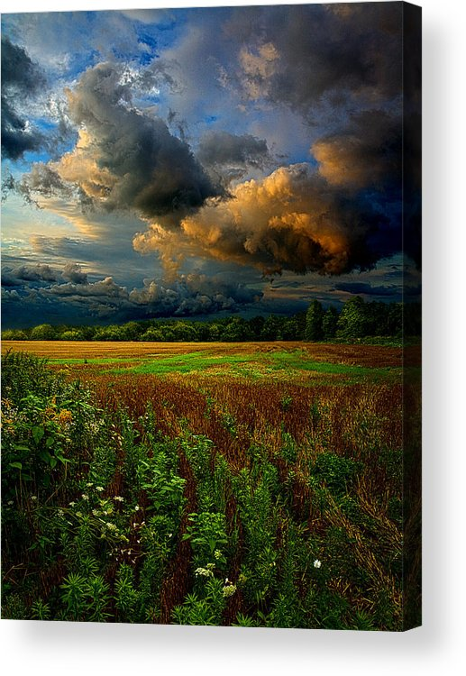 Horizons Acrylic Print featuring the photograph Places In The Heart by Phil Koch