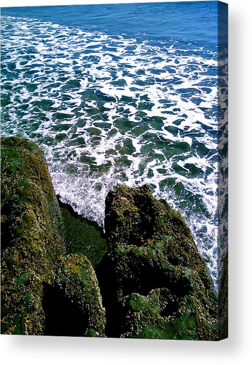 Photograhy Acrylic Print featuring the photograph Point Reyes Pt. 2 by Jeff DOttavio