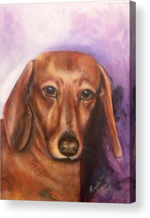 Pet Portrait Acrylic Print featuring the painting Portrait Of Fritz - Commissions Accepted by Renee Dumont Museum Quality Oil Paintings Dumont