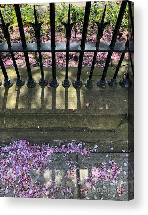 Railing Acrylic Print featuring the photograph Pretty In Pink by Diana Rajala