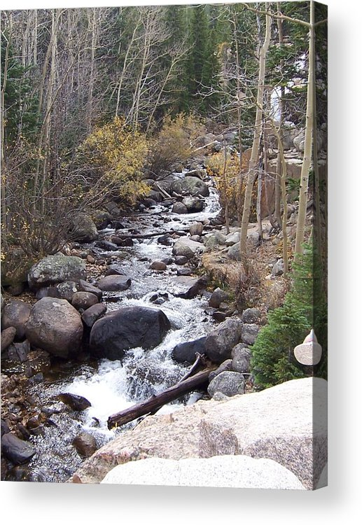 Landscape Acrylic Print featuring the photograph River by Lisa Gabrius