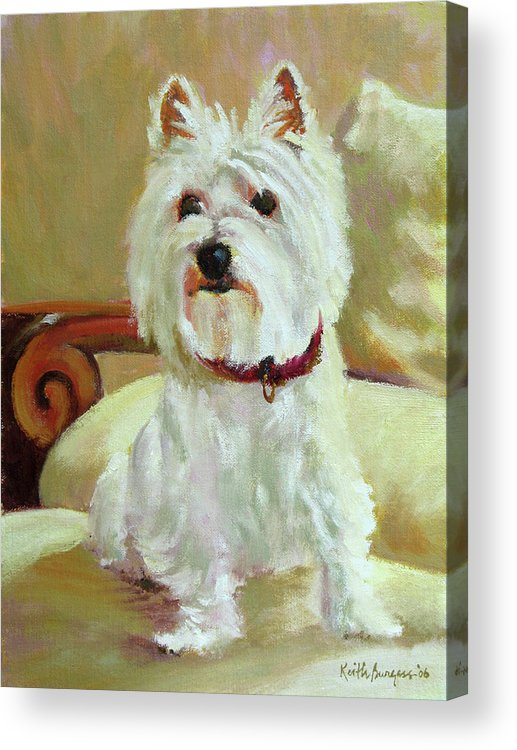 Pet Acrylic Print featuring the painting Schatzie by Keith Burgess