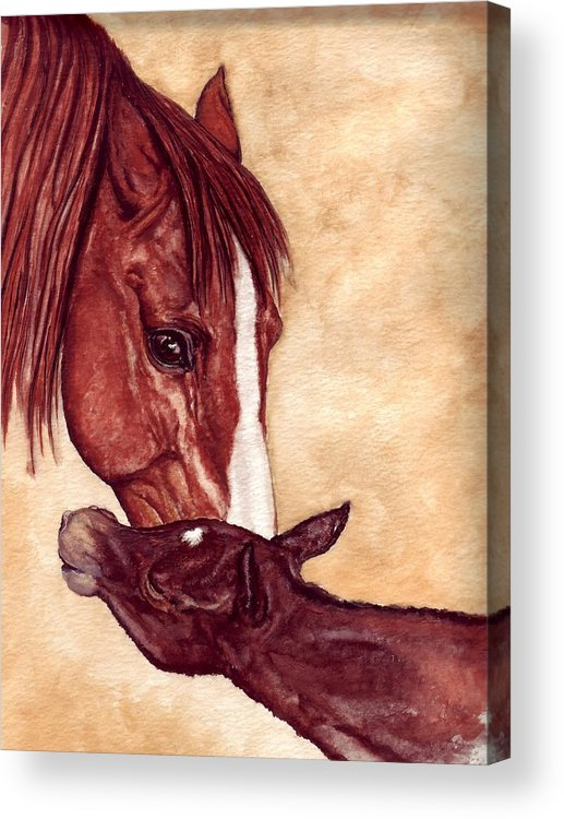 Horse Acrylic Print featuring the painting Scootin by Kristen Wesch