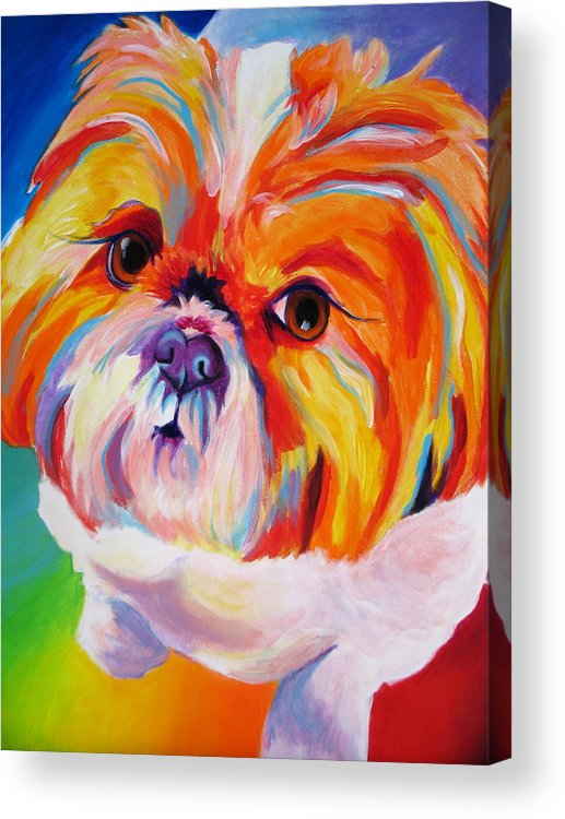Shih Tzu Acrylic Print featuring the painting Shih Tzu - Divot by Alicia VanNoy Call