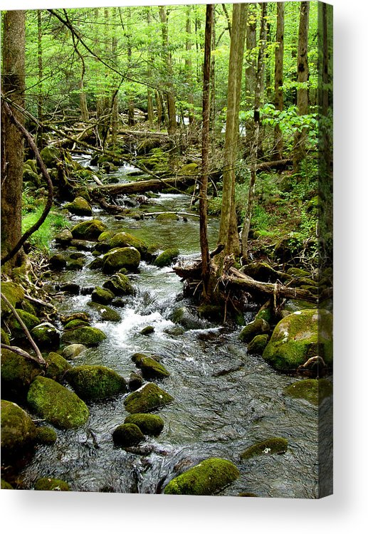 River Acrylic Print featuring the photograph Smoky Mountain Stream 2 by Nancy Mueller