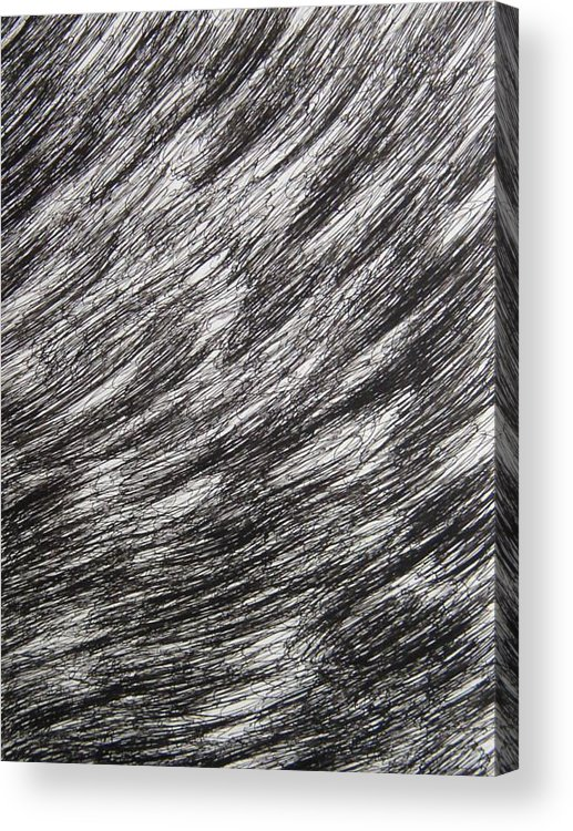 Structure Acrylic Print featuring the drawing Stormy by Uwe Schein