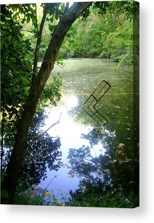 Pond Acrylic Print featuring the photograph The Pond by Scarlett Royal