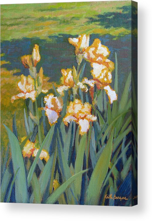 Impressionism Acrylic Print featuring the painting Trimmed In Gold by Keith Burgess