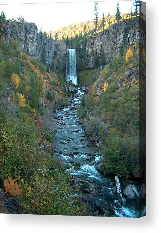 Waterfall Acrylic Print featuring the photograph Tumalo Falls by Janet Hall