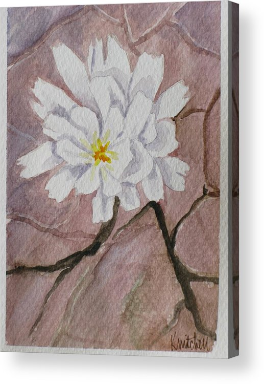 Floral Acrylic Print featuring the painting Wild Flower On The Rocks by Kathy Mitchell