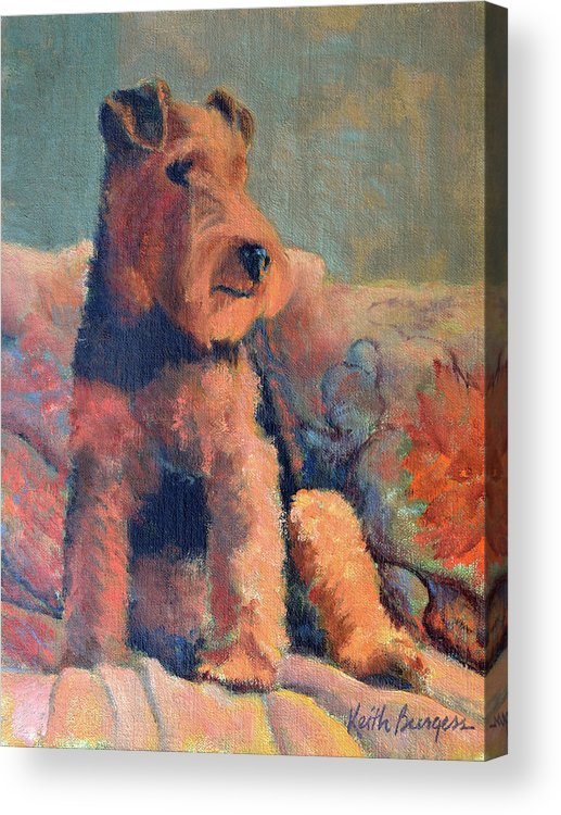 Pet Acrylic Print featuring the painting Zuzu by Keith Burgess