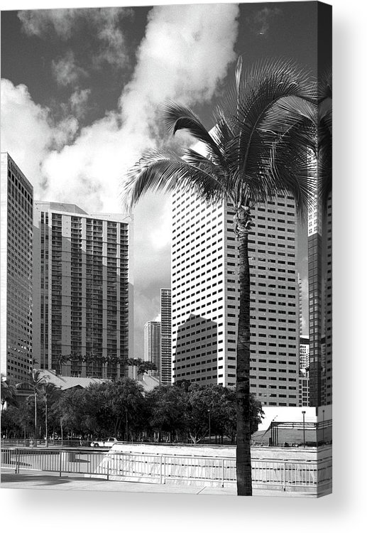 Park Acrylic Print featuring the photograph Miami Downtown 071903 by Rudy Umans