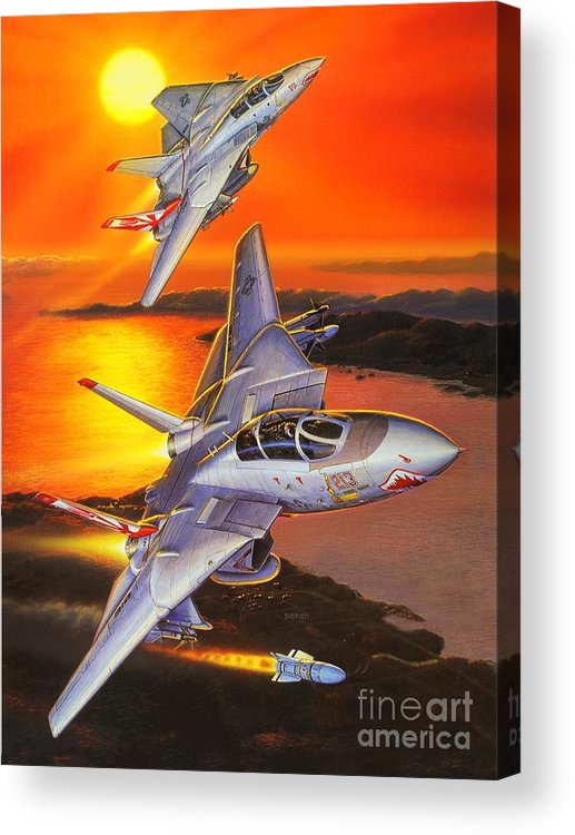 F-14 Tomcat Acrylic Print featuring the painting Sundowner Tomcats by Stu Shepherd