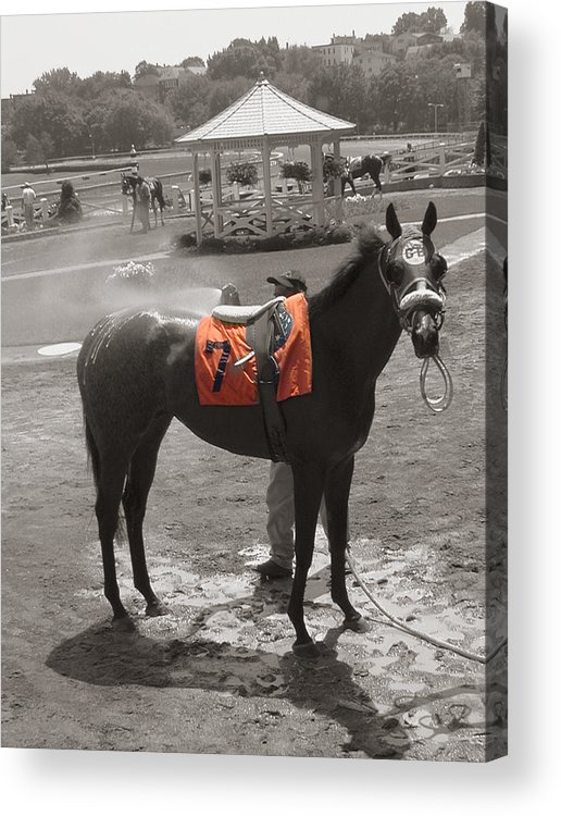 Suffolk Downs Acrylic Print featuring the photograph Lucky No. 7 by Heather Weikel