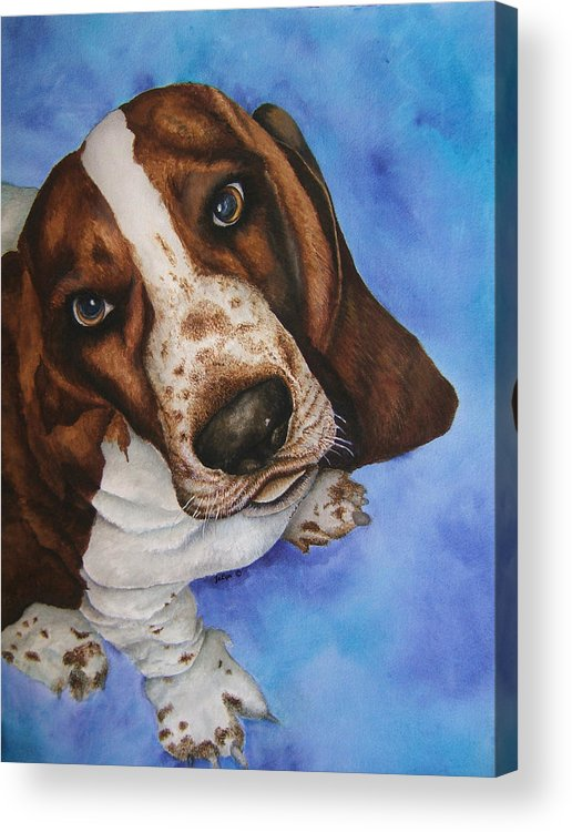 Basset Hound Dog Puppy Acrylic Print featuring the painting Otis The Basset Hound by JoLyn Holladay