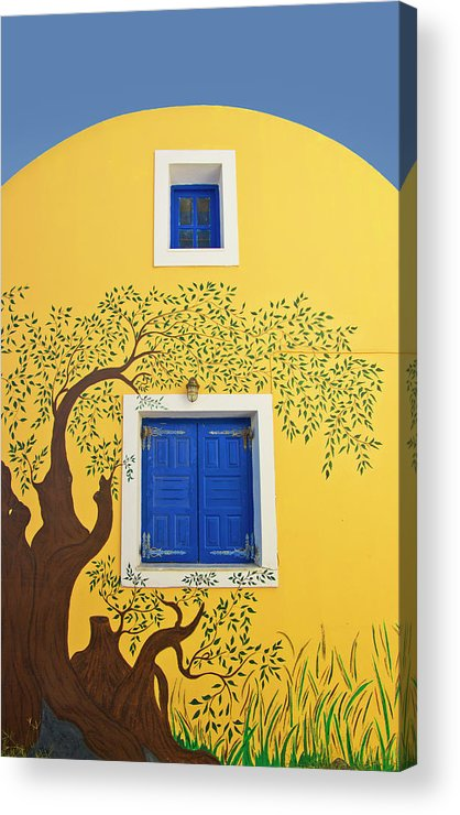 House Acrylic Print featuring the photograph Decorated House by Meirion Matthias